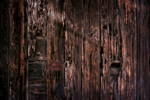 Wood by funeralStock