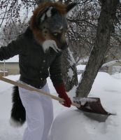 Shoveling the Snow by Beetlecat