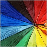 Brolly. by kle0012