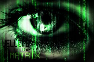Welcome To The Matrix by amara180