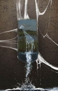 Water Giraffe in a Bottle - Or how we waste lifes by B-O-K-E