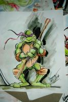 TMNT Donnie by Noumier
