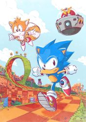 Sonic by MIRRORMASTER