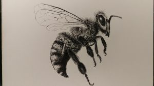 Pen drawing. Practicing using pen and ink. by akarudsan