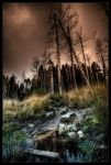 Dark swamp by zardo