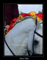 Andalusian - Show Plait by the-other1