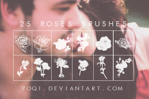{25 Roses Brushes} by Poqi