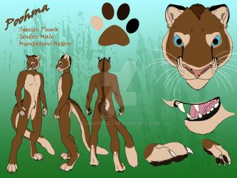 Refsheet for my future fursuit: Introducing Poohma by FuranIrcas
