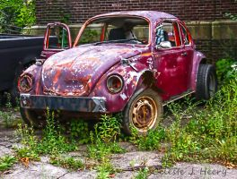 Abandoned VW Bug by cjheery
