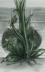 The plant in the library by Luppa