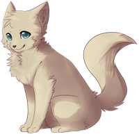 Cat by JAYWlNG