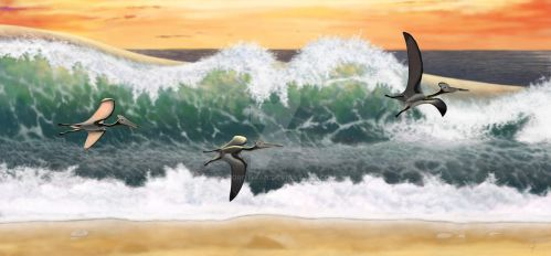 Pterosaurs and a surf by Olorotitan