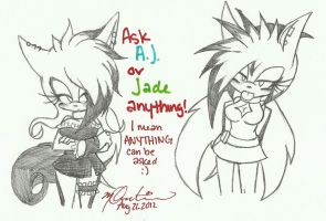 Ask the Hedgehogs :A.J-J: by xl-Jade-lx