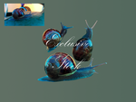 Exclusive stock - Snail by DinowCookie