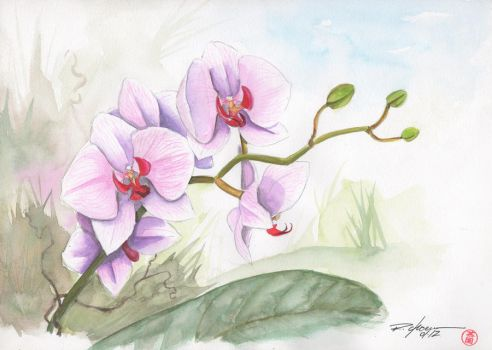 orchid 3 by rchaem