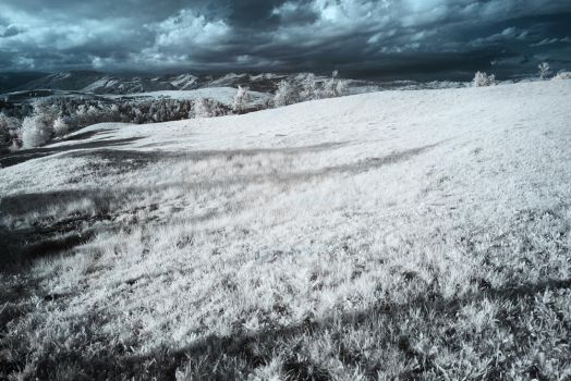 Infrared4 by fripturici