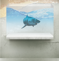 Shark Aquarium PSD by wsaconato