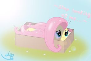Fluttershy in a box by Bugplayer