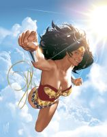 WW Hardcover Encyclopedia by AdamHughes