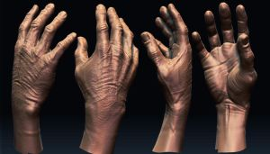 Zbrush Hand by Bast75