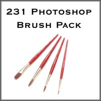 231 Photoshop Brushes by 18Designs
