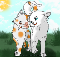 Cloudtail X Brightheart by Harryn53012