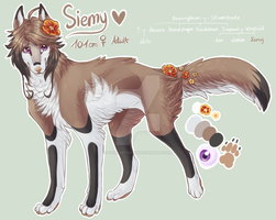BBAD : Siemy's ref sheet by noiresetoiles