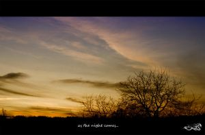 as the night comes... by archonGX