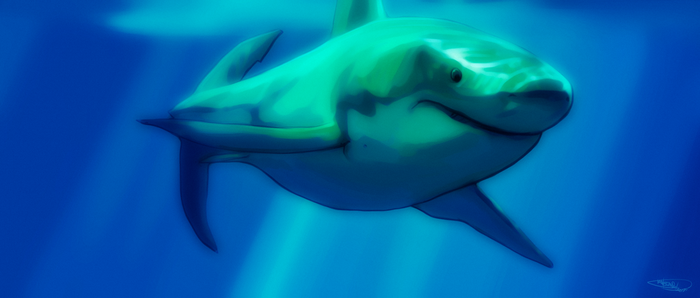 Great White by NoahBDesign