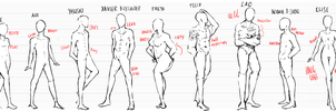 Body type and Height Reference by Calvariae