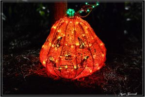 Jacksonville Zoo pumpkin lamp by AnimaSoucoyant