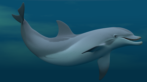 Dolphin Test by Lavik1988