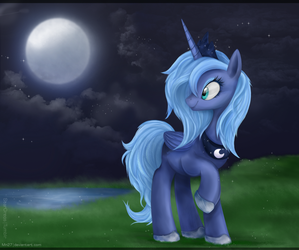 The Night by Mn27