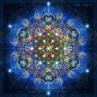 Winter Mandala by Lilyas