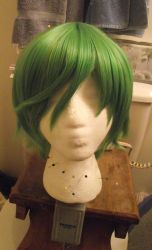 Salad Bar Wig by shuu-bunni