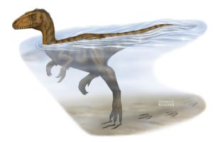 Swimming Theropod of Early Cretaceous China by MicrocosmicEcology