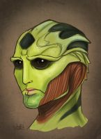 Thane Portrait by WendyDoodles
