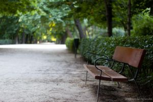 Bench in the Retiro by naturtrunken