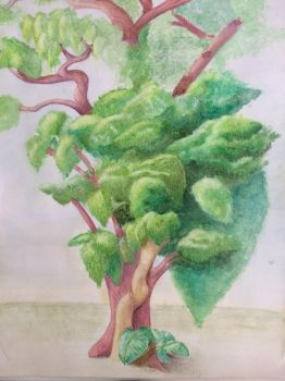 Trees (observational watercolor) by Lulabys-Melody