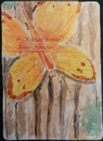 Amber Attraction web by Sophia-Christina