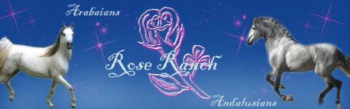 Rose Ranch Banner by LadyEdana