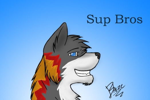 Sup bros by blazingwolf-fang