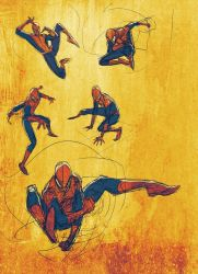Spidey digital sketches by JoeyVazquez