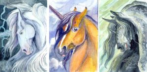 Mythical Equine Cards - Storm Set by lunatteo