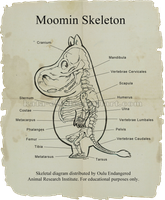 Moomin Skeletal Diagram by Kata-elf