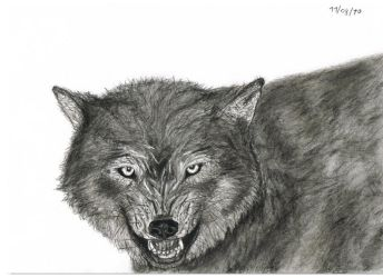 Angry Wolf by SubLeLumiere