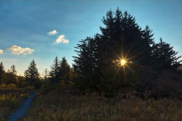 Spruce Knob Sunburst Trail (freebie) by somadjinn