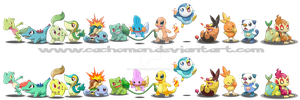 All Pokemon Starters + Shiny by Cachomon