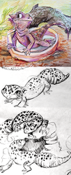 Bearded Dragon and Leopard Geckos by sharkie19