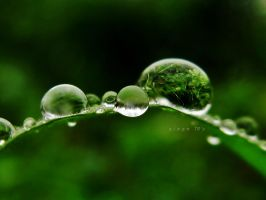 happy droplets by sinanTR
